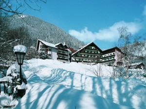 Brand skidorp