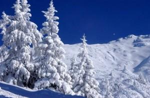 Seefeld & Leutasch skigebied